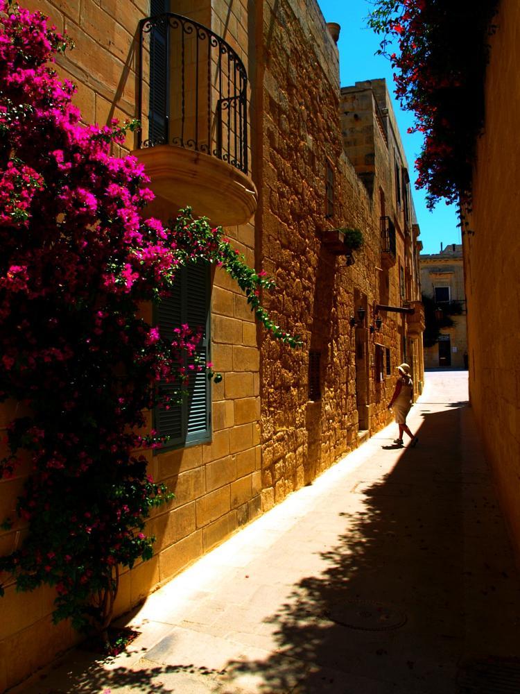 Photo in Cityscape #malta #holiday #summer #mdina