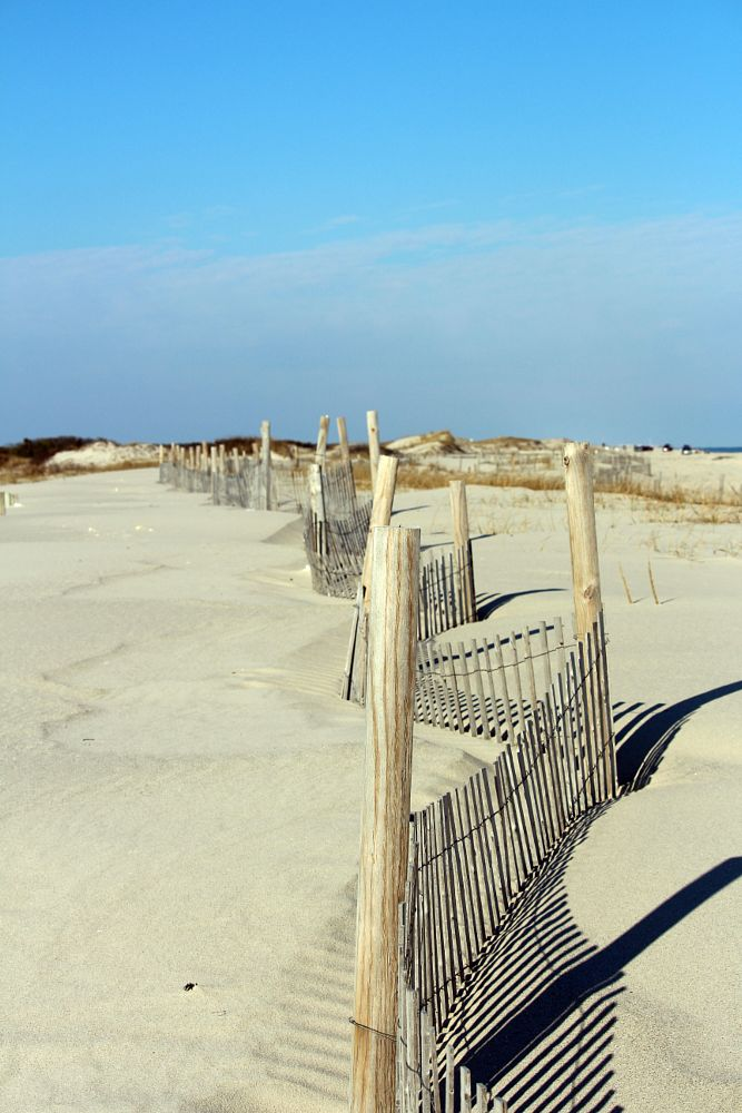 Photo in Sea and Sand #beach #fence #structure