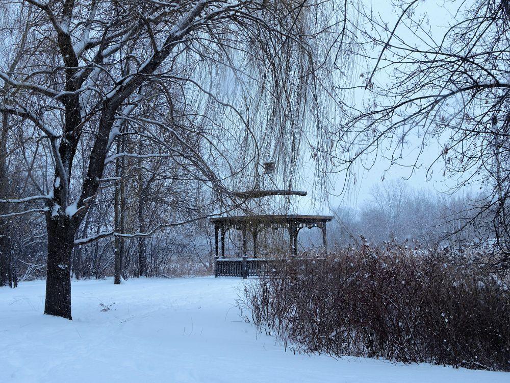 Photo in Landscape #lake #snow #manual #winter