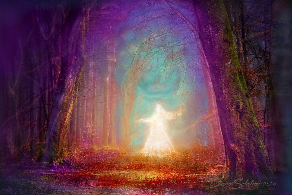 Photo in Random #twilight #rainbow #apparition #trees #water #purple #blue #aqua #gold #red #green