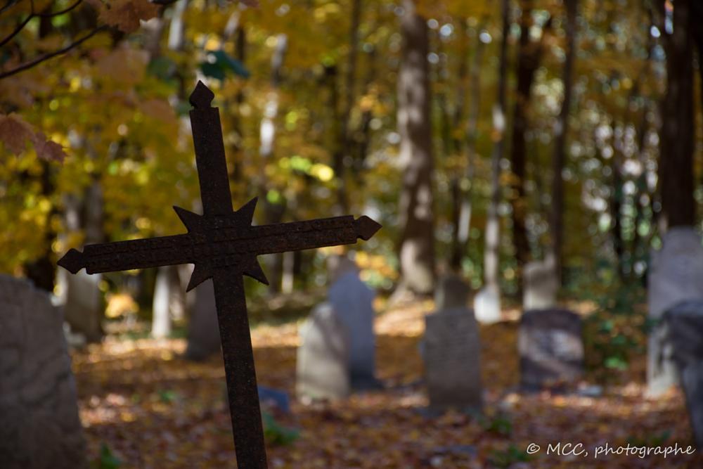 Photo in Random #québec #cimetery #cimetière #croix #cross