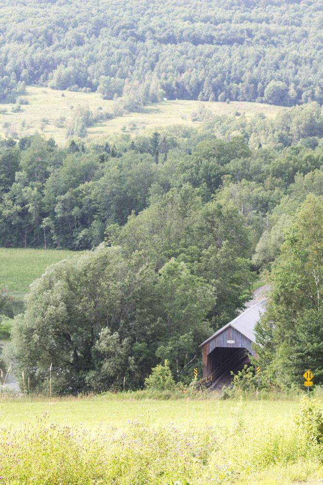 Photo in Architecture #covered bridge #tree #rural #road #nature