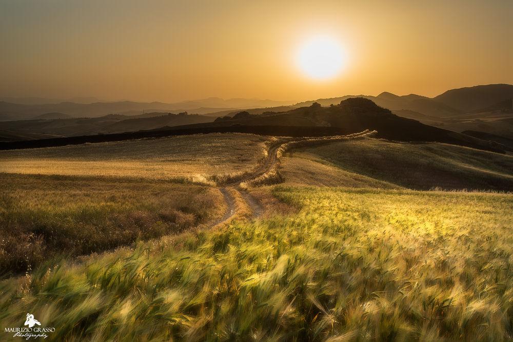 Photo in Landscape #tramonto #natura #sunset #canon #paesaggio