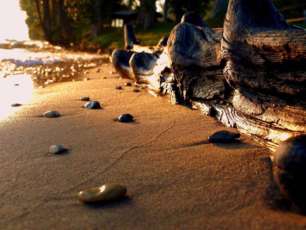 Photo in Nature #crystal lake #michigan #lake #rocks #log #sand