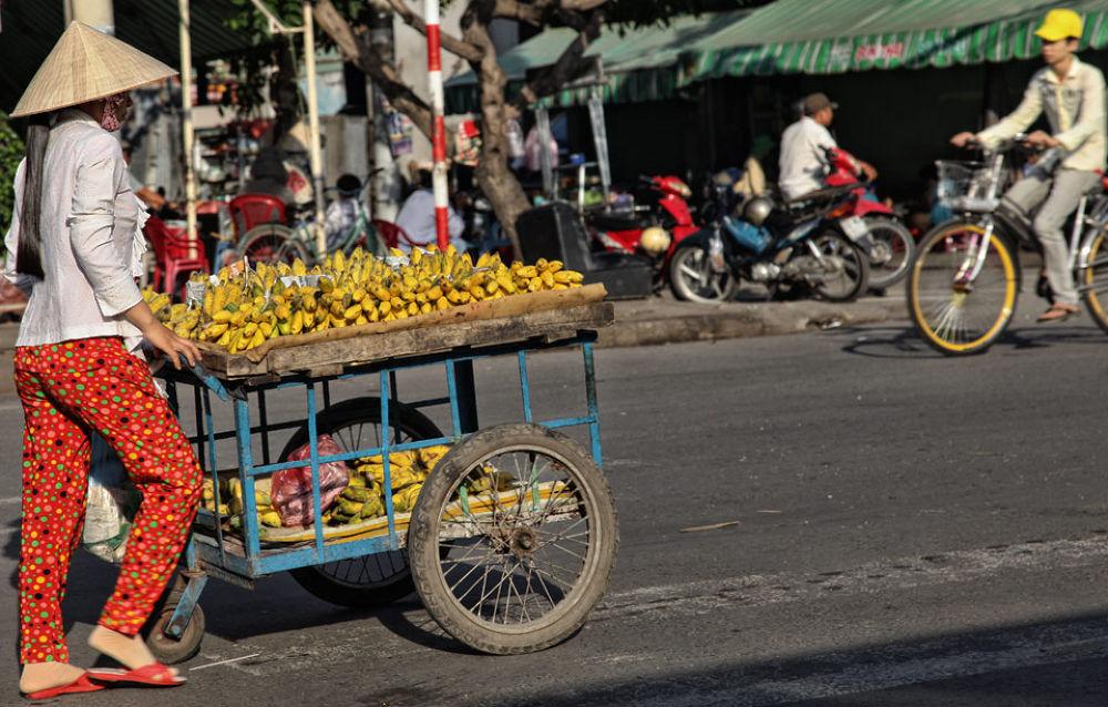 Photo in Random #magaflor #saigon #vietnam