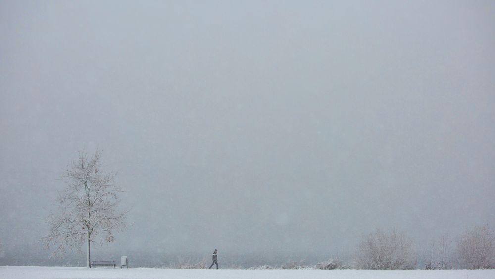 Photo in Random #lonely #eenzaam #walking #wandelen #sneeuw #snow #winter #2017 #cold #lumiere park #almere #almere-stad #park #wintercanon #5d #markiii #alex verweij