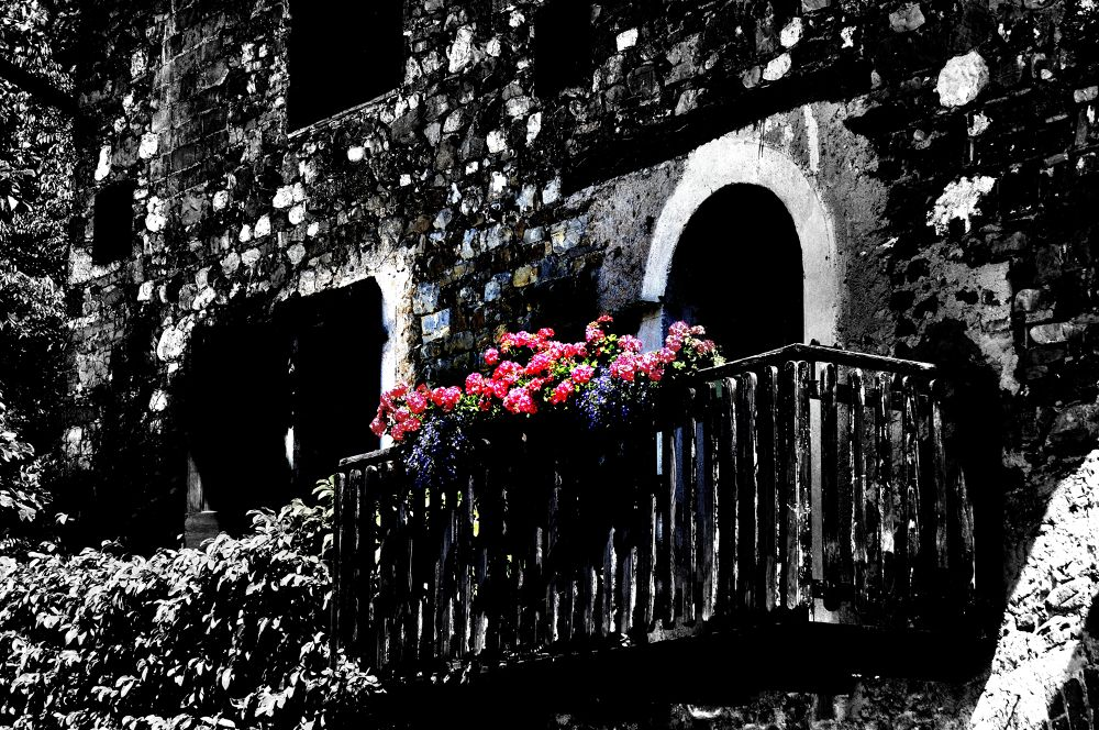 Photo in Black and White #italy #yapa2013 #friuli