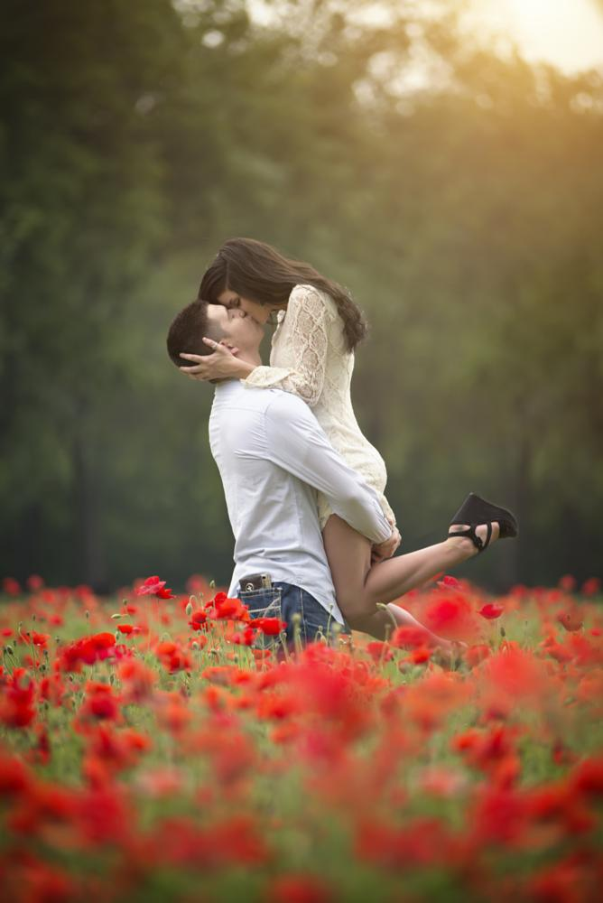 Photo in Portrait #poppies #flowers #love #sunset