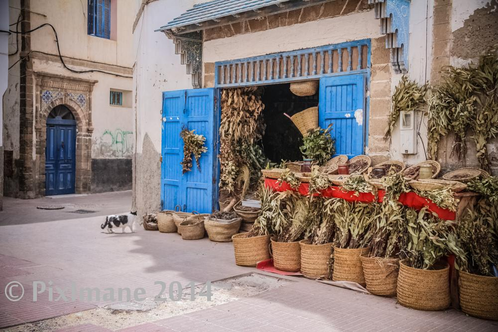 Photo in Travel #essaouira #morocco #travel