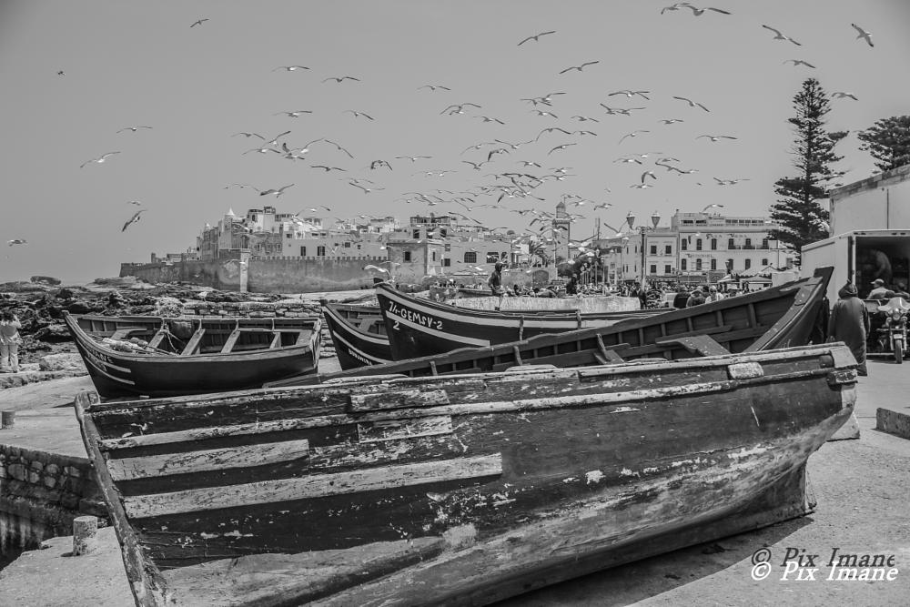 Photo in Travel #essaouira #morocco #boat #oldtown #travel