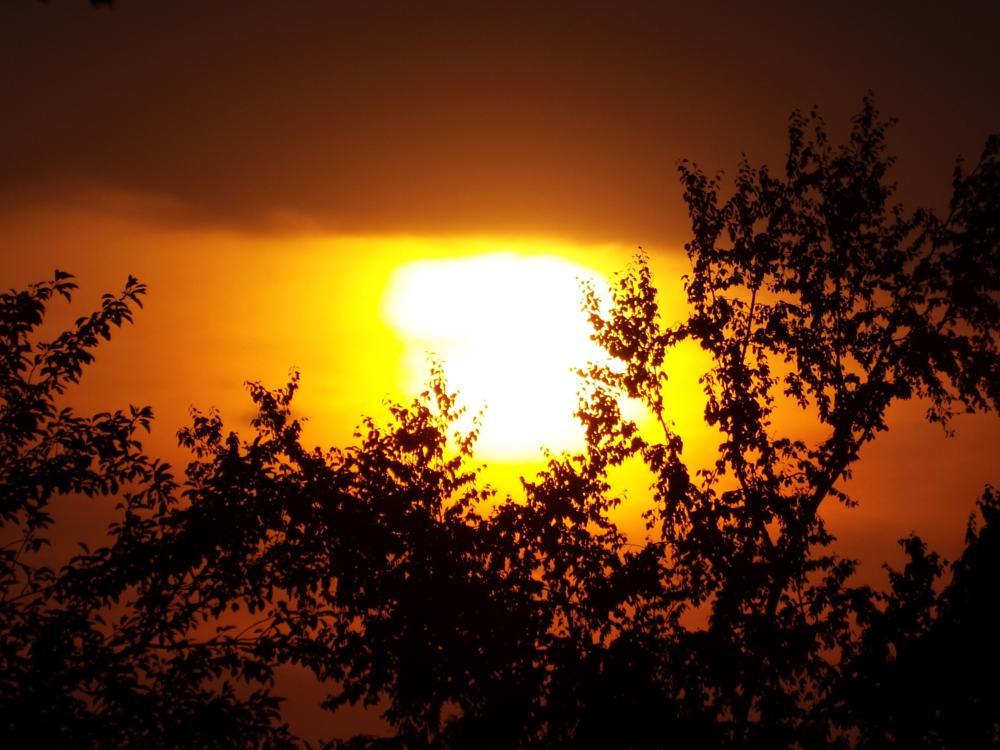 Photo in Nature #sunsets #random shots