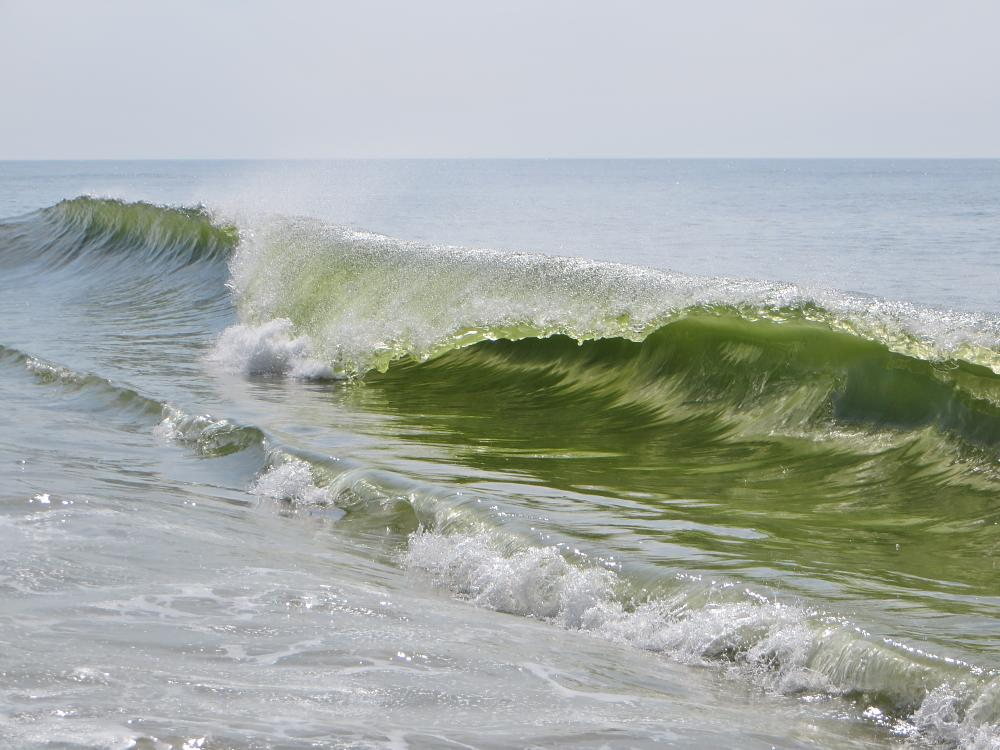 Photo in Sea and Sand #sand #shoreline #waves #peaceful #surf