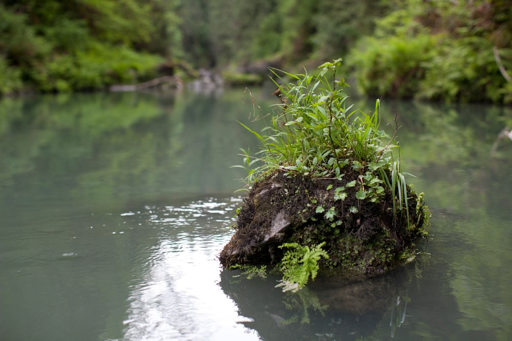 Photo in Nature #river #rock #island #water