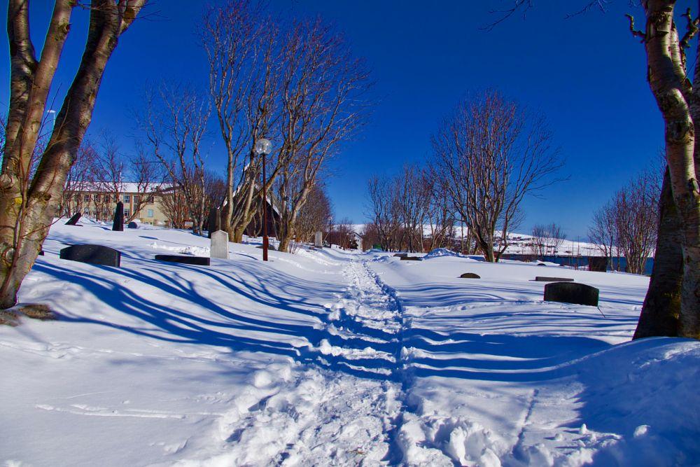 Photo in Landscape #sun #easter #snow