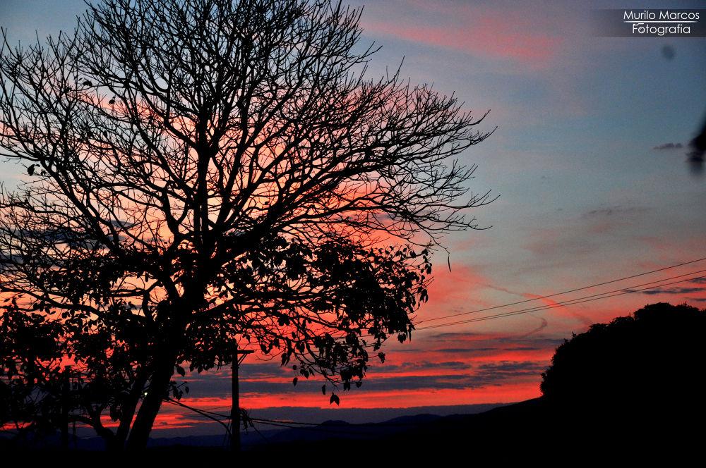 Photo in Random #yap2013 #murilomarcosfotografia #sunset #brasil