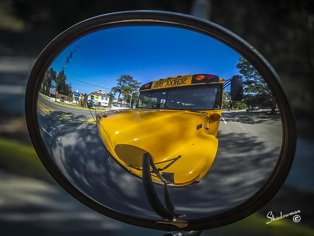 Photo in Urban #school bus #reflection #photography