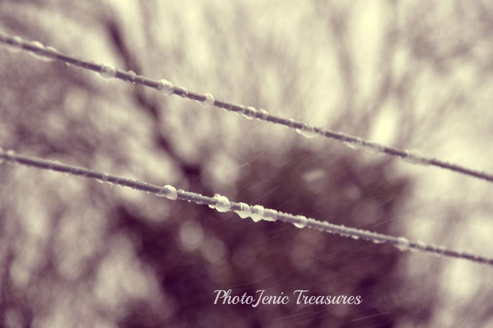 Photo in Random #ice #weather #winter #photojenic treasures