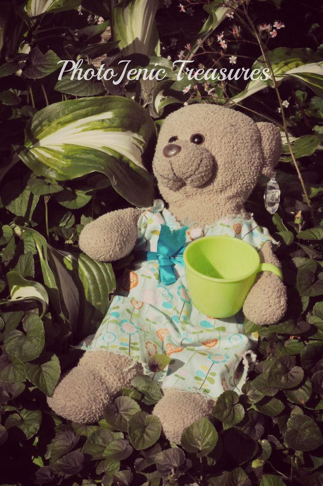 Photo in Random #relax #fun #photojenic treasures #bear #teddy #soft toy #plush
