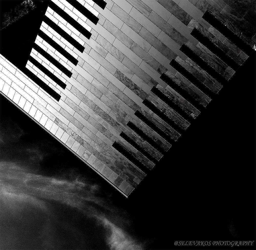 Photo in Black and White #nikon d 610 #nikon 50 f /1.4