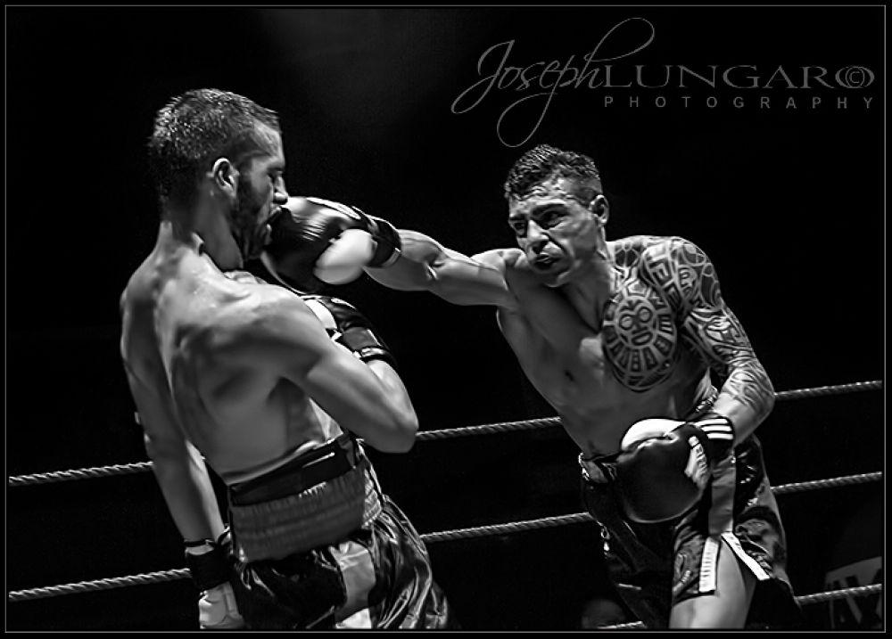 Photo in Black and White #boxing #sports #malta