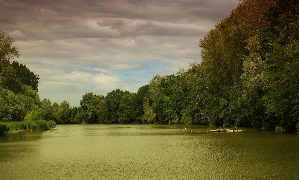 Photo in Landscape #zöld víz szigetbecse hungary