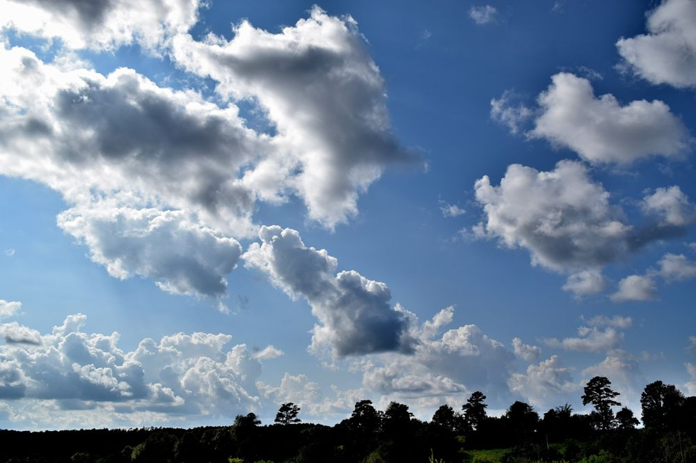 Photo in Nature #cloud #clouds #sun #trees #dark clouds #sky #nature #arkansawhillbilly #google me: lawrence scott hess