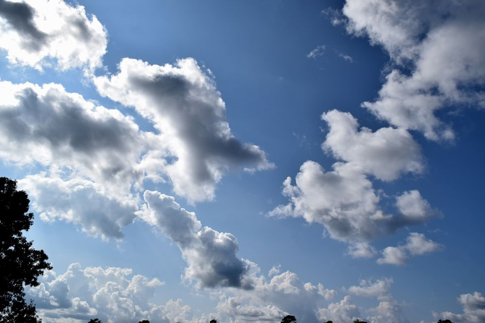 Photo in Nature #cloud #clouds #sky #shapes #blue sky #nature #arkansawhillbilly #google me: lawrence scott hess