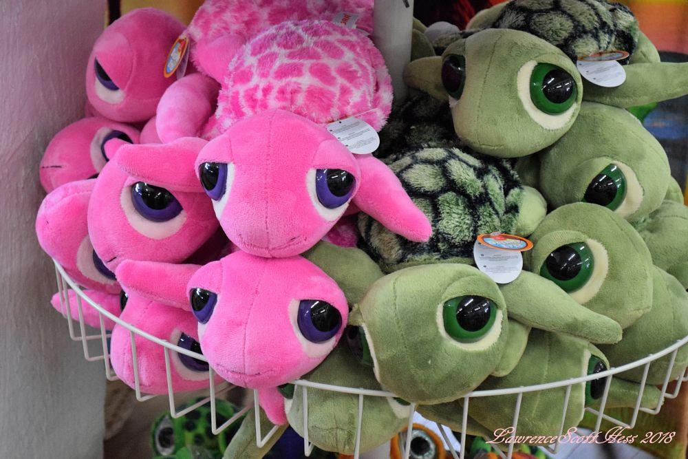 Photo in Still Life #stuffed animals #turtles #eyeballs #still life