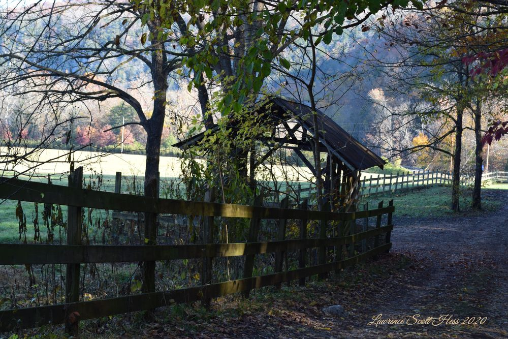Photo in Nature #country #fence #autumn #leaves #fall #nature