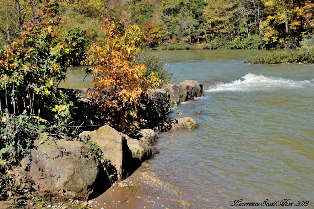 Photo in Landscape #water #river #trees #leaves #fall #autumn #nature #landscapes #waterscapes