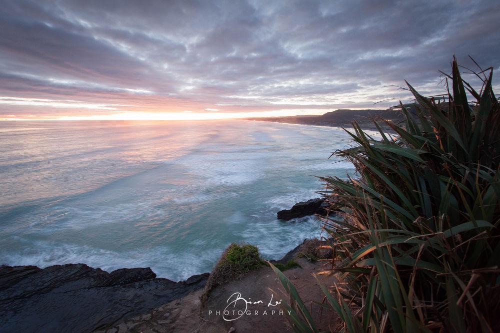 Photo in Landscape #beach #muriwai #wave #coast #ocean #rock #wavewaves #rocks #bush #flex #sunset #clouds