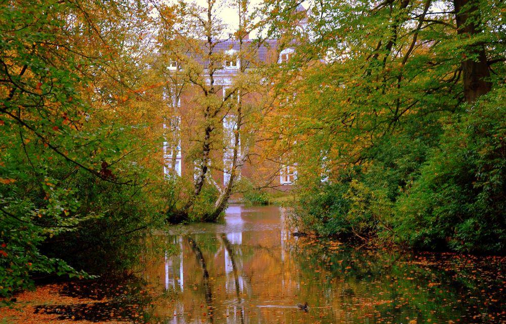 Photo in Landscape #autumn #trees #leaves #colours #yellow #green #manor #house #pond #water #reflection #magical #place #imagination #fairies #nymphs #dryads #hide #nature #landscape #herfst #najaar #bomen #bladeren #natuur #landschap #fall #foliage #jesen #priroda #jesenjelišće #boje #jesenjipejzaž #pejzaž #season #sfeer #mood #bird #holland #netherlands #orange #brown