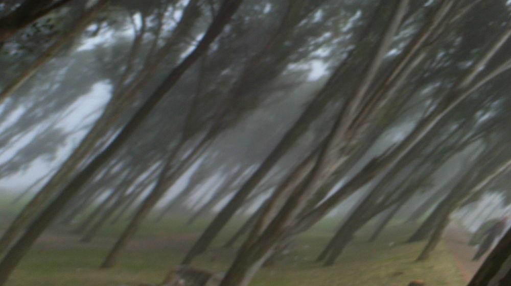 Photo in Random #uruguay #montevideo #abstract