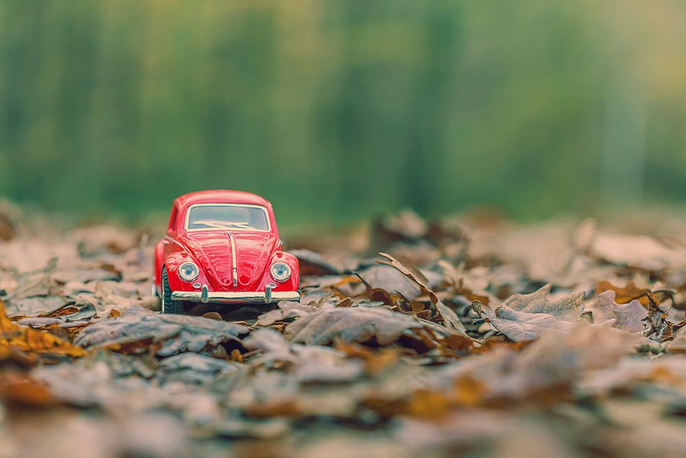 Photo in Macro #1967 #red #vosvos #volkswagen #istanbul #bahcekoy #green #forest #fall #autmun #nature
