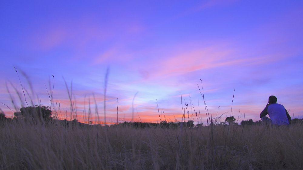 Photo in Random #nature #sunrise #skyline #beauty #light #australia #travel #landscape #colour #thoughts #moment #bush #rural #holiday #road trip
