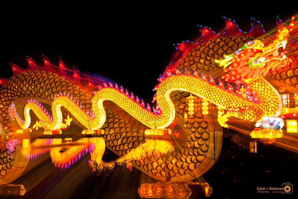 Photo in Random #zoo antwerpen china light #antwerpen #dragon #zoom