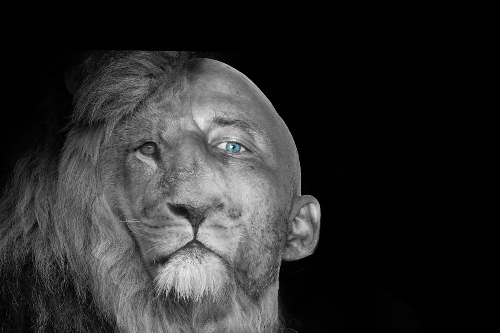 Photo in Animal #lion #men #photoshop #blue