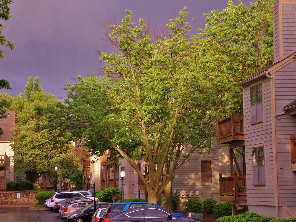 Photo in Nature #storm #rain #light #sun #shawnee #kansas #weather