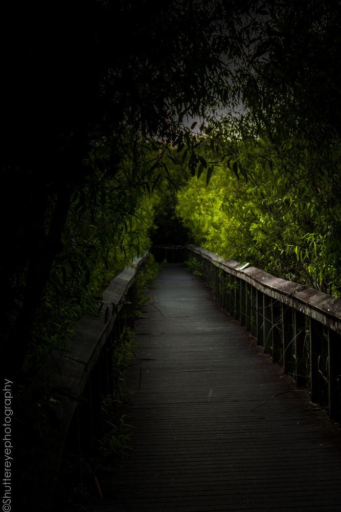 Photo in Random #old bridge #nature #national park