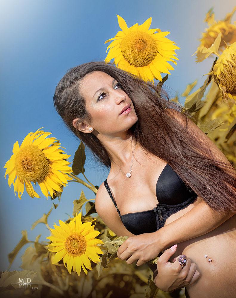 Photo in Portrait #girl #sunflower #wunflowers #sunflowers #blue sky #bra #lingerie #underwear #sexy #glam #glamour #pinup #pin-up #lovely #adorable #long hair #yellow #french #gold #brunette #golden #flower #sun #flowers #sky #summer #sunny #sunlight #light #blue #black #young