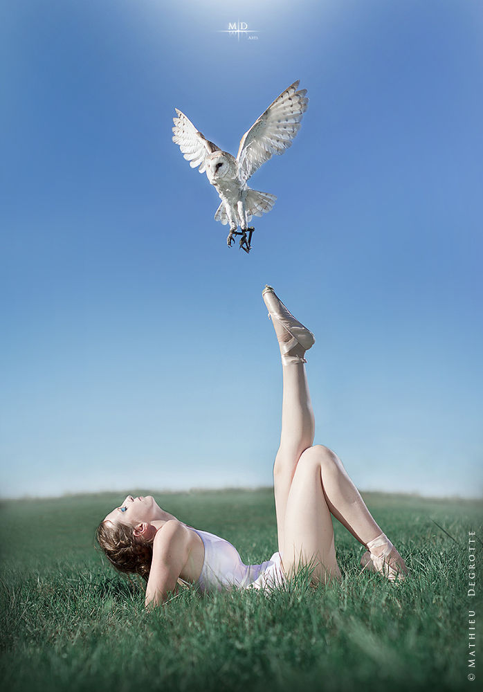 Photo in Nature #girl #dancer #white #owl #snow #snowy #sunny #wing #wings #spread #spreading #soarin #soaring #flying #leg #posing #beauty #nature #wilderness #anew #sky #blue #light
