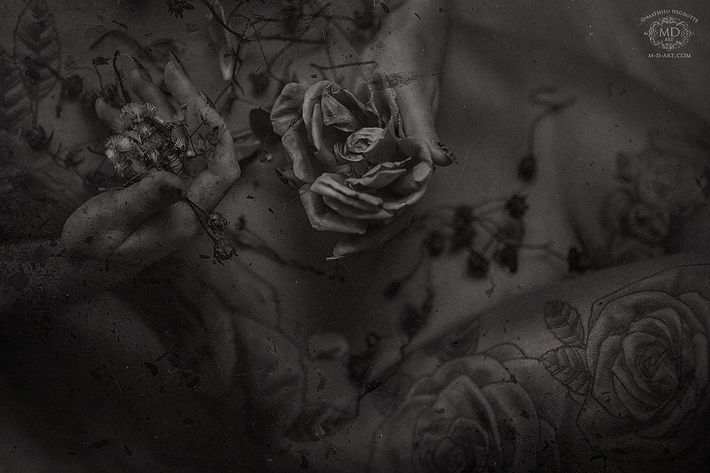 Photo in Black and White #bodyscape #girl #nude #roses #tattoo #tattooed #inked #hands #intimate close #naked #girlblacj #black #white #greytones #vintage #decay
