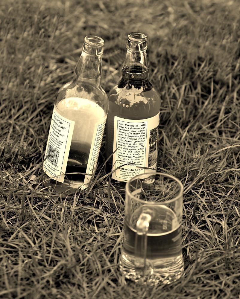 Photo in Black and White #glass #bottles #cider #monochrome #sepia