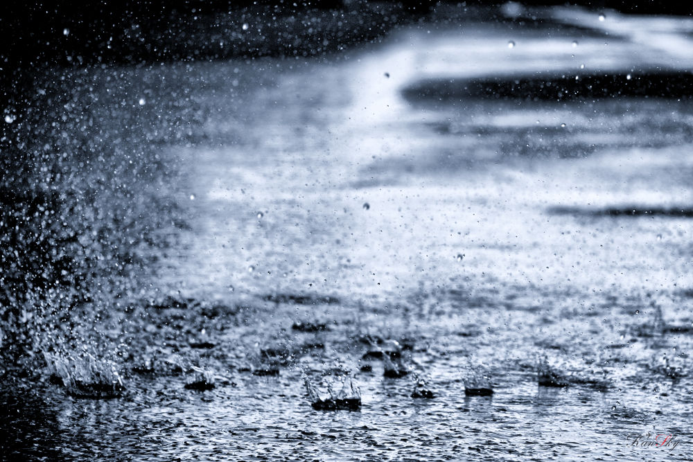 Photo in Nature #rain #water #color