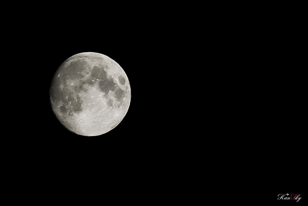 Photo in Astrophotography #moon