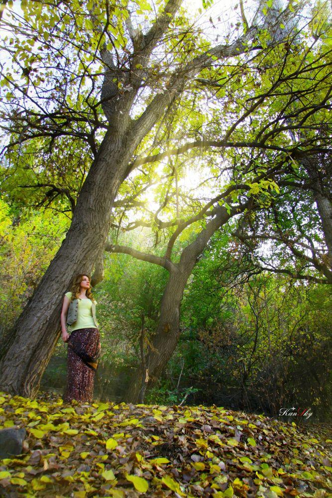 Photo in Nature #sun #light #wooman #nature #autumn