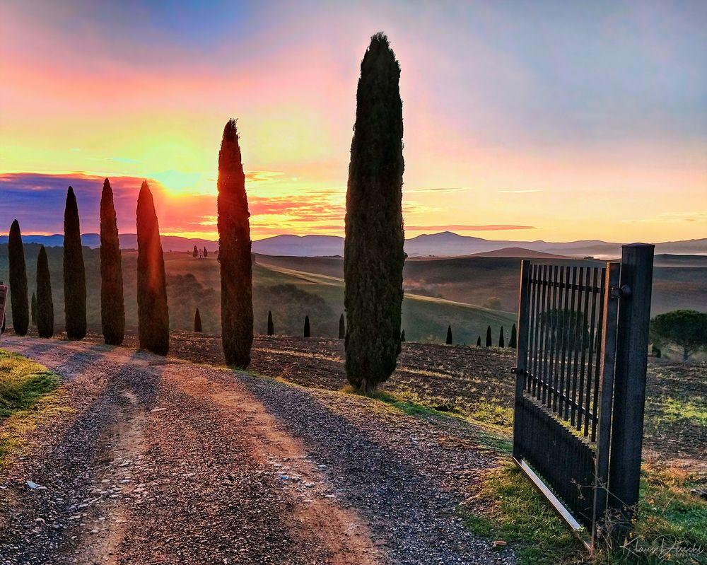 Photo in Landscape #landscape #sun #sunrise #morning #colour #sky #clouds #hills #tree #gate #travel #road #publicity #nature #holidays #fog #random