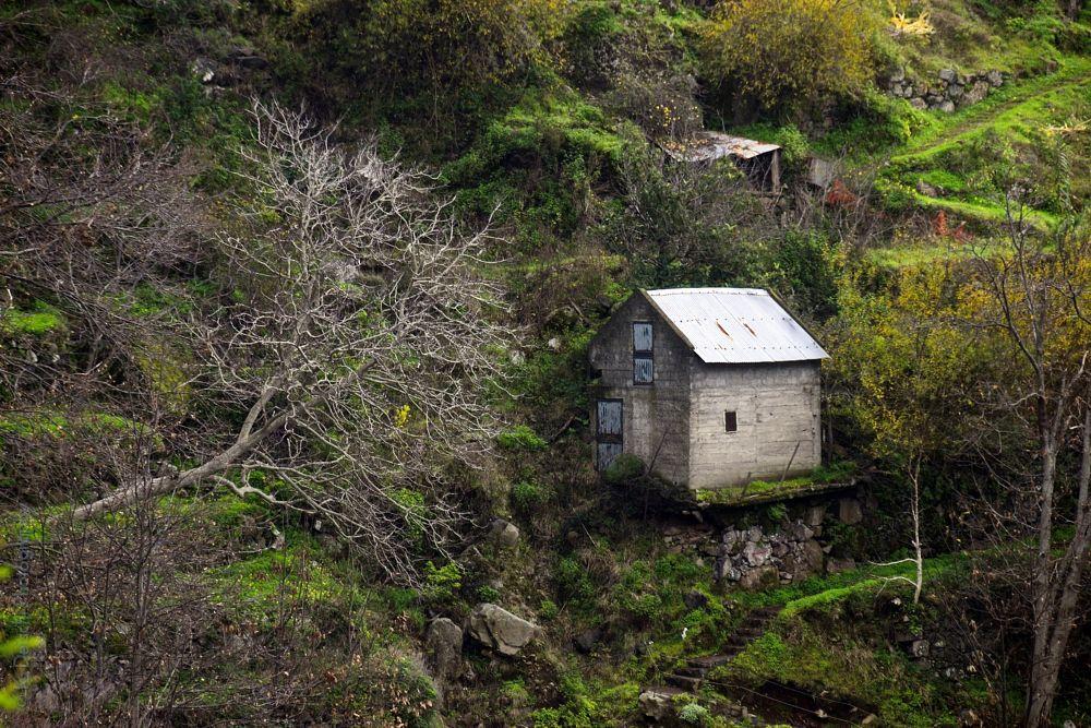 Photo in Journalism #nature #travel #random #nikon #green #tree #house #publicity #mountain #klaus.deischl #landscape #architecture