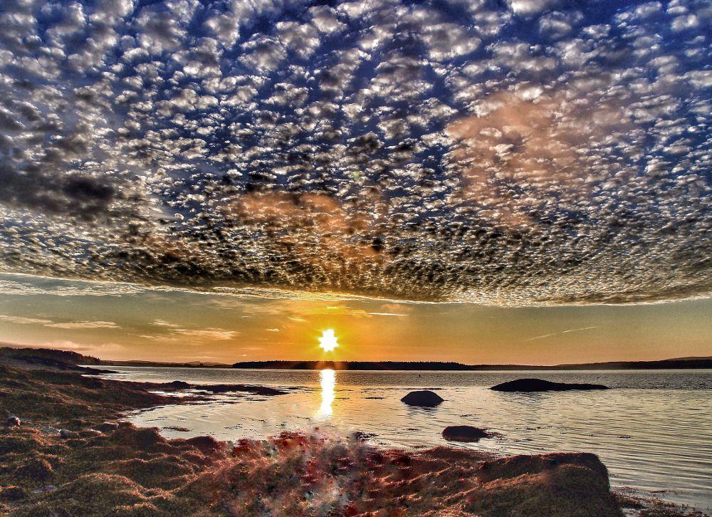 Photo in Random #sun #sunrise #ocean #water #coast #scenic #rocks #shoreline