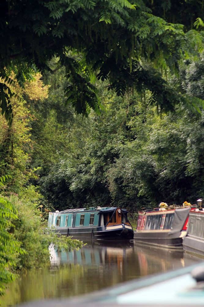 Photo in Landscape #narrowboat #thrupp #canal #water #trees #drumstudio photography